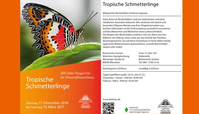 """Plakat Ausstellung """"Tropische Schmetterlinge"""""""